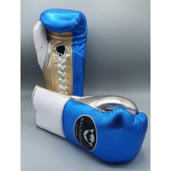Salvador Professional Fight...